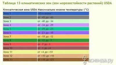 Климатическая зона 5 России что это?